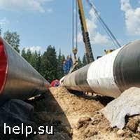 Экологи хотят приостановить строительство газопровода