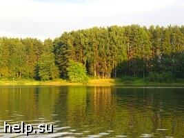 Сергей Миронов принял участие в акции против застройки зоны Истринского водохранилища