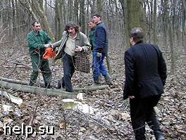 Граждане попытались остановить землеустроительные работы в парке Царицино