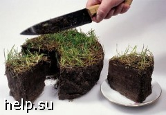 Мошенник продавал колхозную землю за 9 млн. рублей