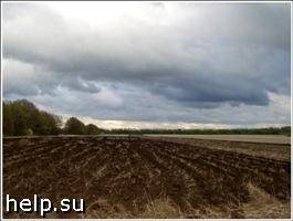 Приватизация сельскохозяйственных земель в Забайкалье начнется в 2010 году