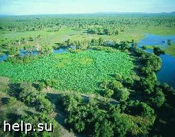 Орловские бизнесмены незаконно присвоили земли национального парка