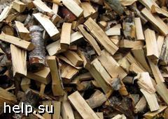 В Санкт-Петербурге узаконена вырубка леса «для собственных нужд»