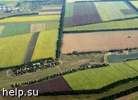 В Курганской области выявлено свыше 500 нарушений земельного законодательства