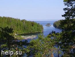 Земельные участки на берегу Ладожского озера выдавали незаконно