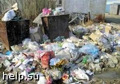 Москва перерабатывает лишь 6% собственных отходов