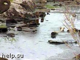 На реке Белая обнаружено нефтяное пятно