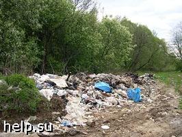 В Кемеровской области выявлено 617 правонарушений в сфере охраны окружающей среды