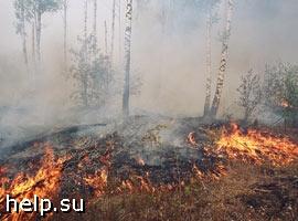 В Читинской области израсходованы практически все средства на тушение пожаров