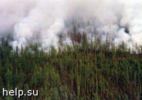 На Дальнем Востоке полыхают 47 пожаров