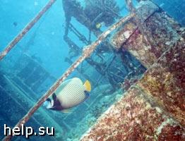 Затопленные корабли угрожают экологии