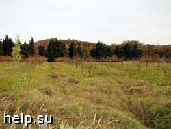 У сочинцев выкупят полторы тысячи земельных участков